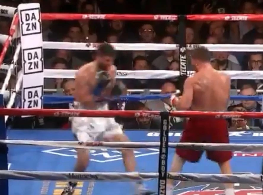 The Moment Canelo Landed The Perfect Body Shot To Knockout Fielding